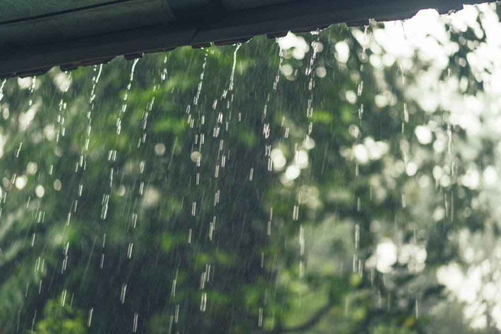 What is Rainwater harvesting